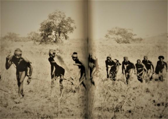 cacciatori-lobi
