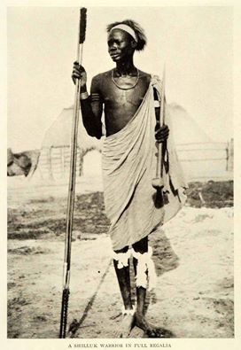 Shilluk Warrior of Sudan in full regalia, early 20th Cen, Photographer Unknown.